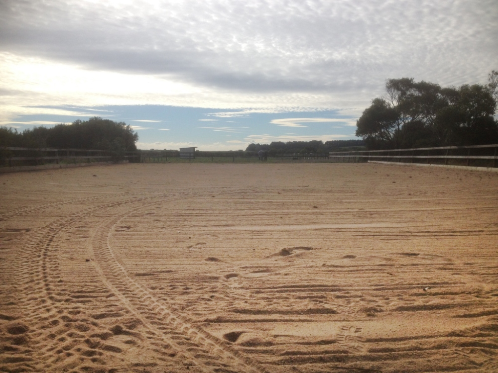 After sand arena rennovation