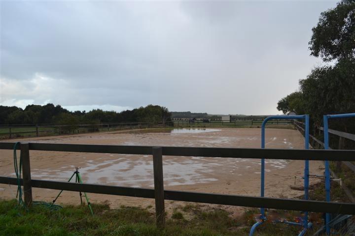 Before sand arena rennovation
